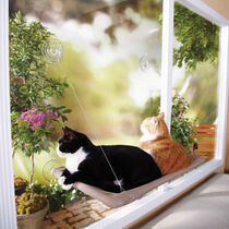 Sunny Seat Cat Window Bed