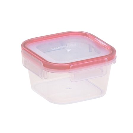Airtight Food Storage 1.3 Cup Container